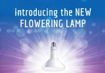 New Philips Flowering lamp AVAILABLE
