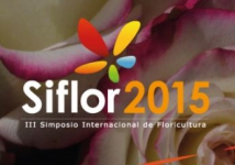 Meet us at Siflor, Ecuador