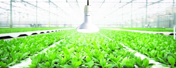 Philips Led Horti Partner